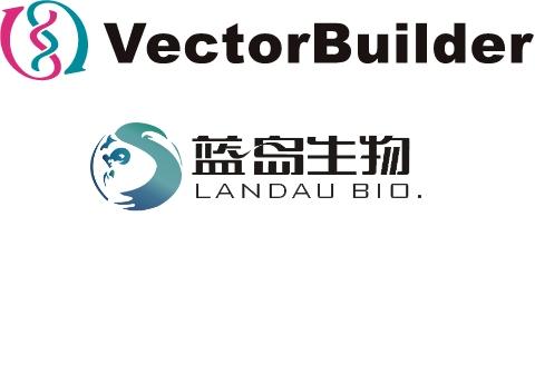 世界初の霊長類遺伝子治療R&Dセンター設立に向けた戦略的パートナーシップをVectorBuilderとLandauが締結しました
