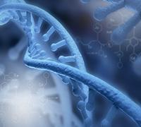 <p>云舟生物临床药物生产基地年产5万瓶基因治疗载体药物建设项目</p>